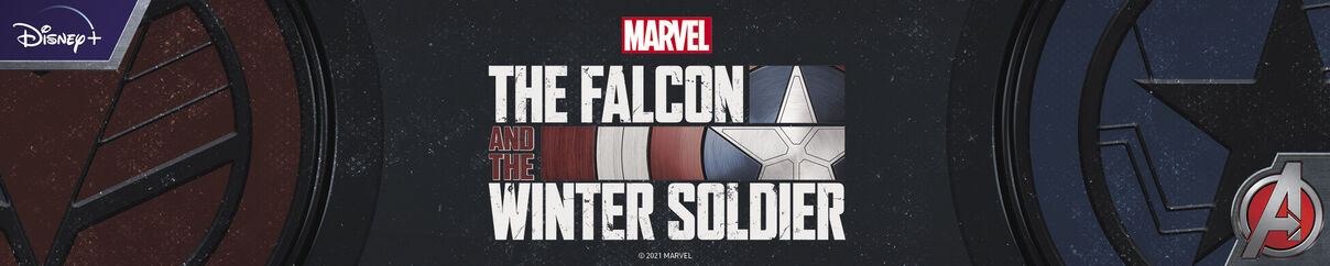 Marvel:  Falcon and The Winter Soldier! - Shop Now!